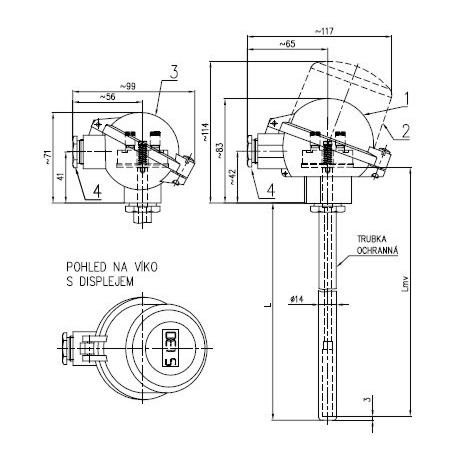 Termoelektrický snímač teploty s kovovou ochrannou trubkou bez převodníku nebo s převodníkem