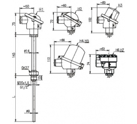 T1003 Odporový snímač teploty s jímkou bez převodníku nebo s převodníkem